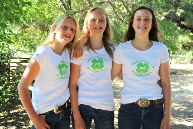 Vinyl 4-H tshirts in action