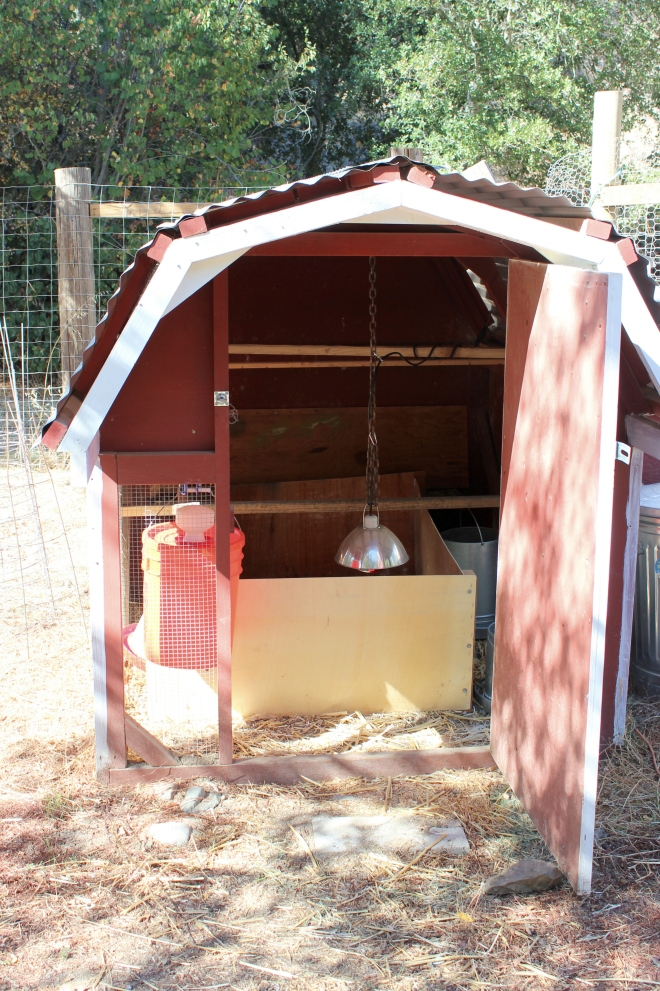 The Tiny Red Chicken Barn: Sweet Little Wood