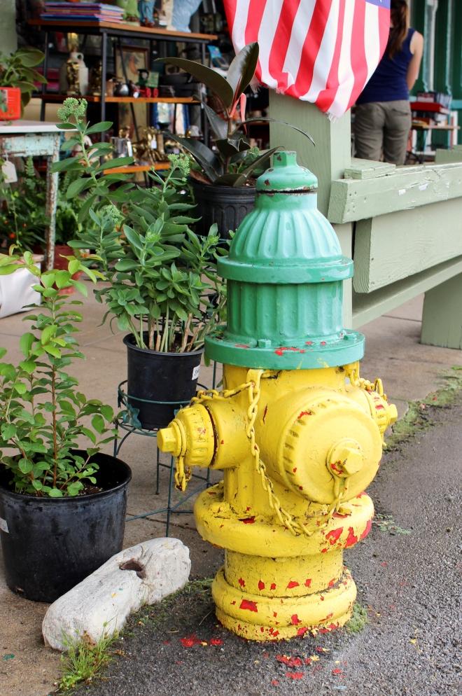 Fire hydrant: Murfreesboro TN.