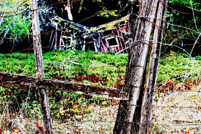 Photos of Ghostly Town Remenants @ Sweet Little Wood