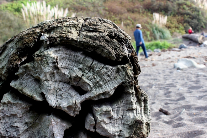 Driftwood. A Day at Small Creek, Northern California @ Sweet Little Wood