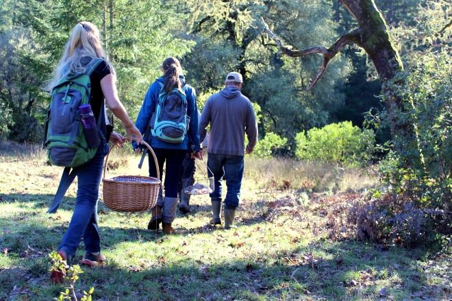 Mushroom hunting at Emerald Earth @ Sweet Little Wood