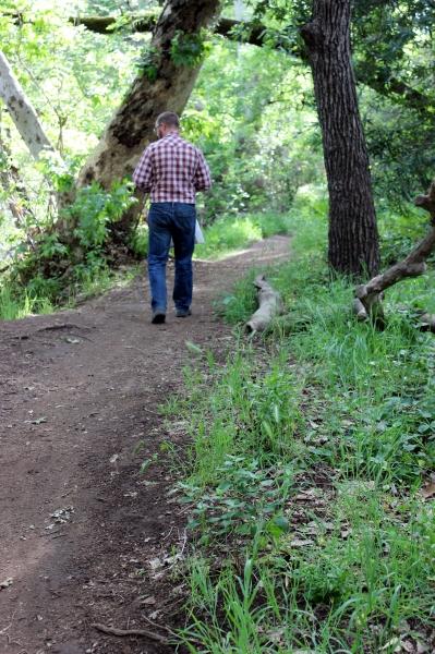 Bidwell Park, Chico, California- Sweet Little Wood